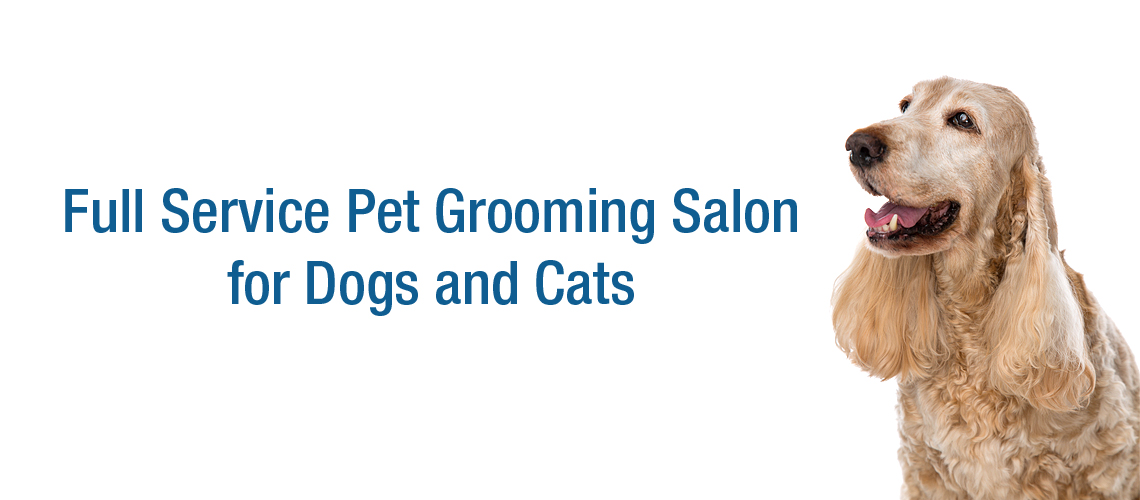 Full Service Grooming for Dogs and Cats